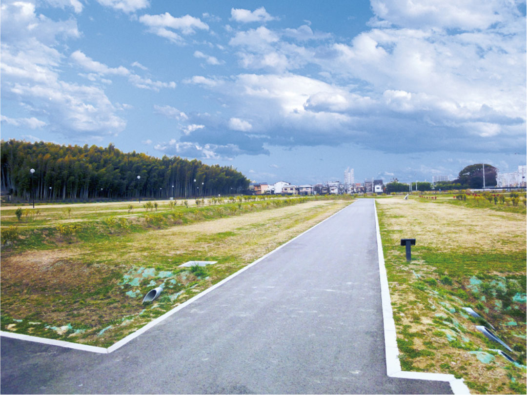 楠葉中之芝地区の写真2